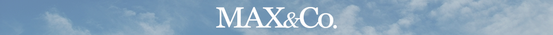 Ochelari de soare Max and Co