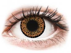 Lentile de contact maro - fără dioptrie - ColourVUE Elegance Brown - fără dioptrie (2lentile)