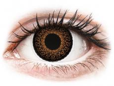 Lentile de contact maro - fără dioptrie - ColourVUE Eyelush Brown - fără dioptrie (2lentile)