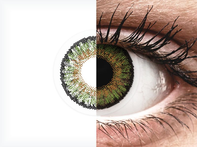 FreshLook One Day Color Green - fără dioptrie (10 lentile)