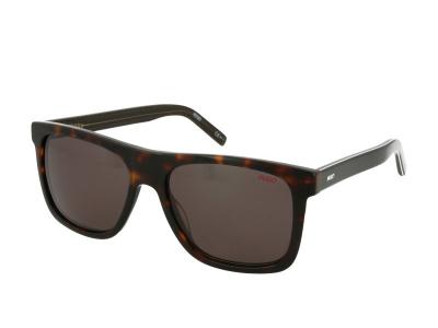Ochelari de soare Hugo Boss HG 1009/S 086/IR