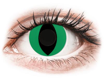 CRAZY LENS - Cat Eye Green - lentile zilnice fără dioptrie (2 lentile)